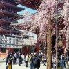 Токио. Асакуса. Храм Сенсодзи