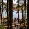 Хаконе. Святилище Хаконе, лес с многолетними криптомериями